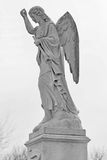 Black and white of Angel holding trumpet statue  i Stock Images