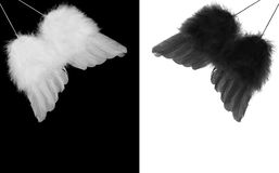 Black and white angel wings. Collage of black and white feather angel wings on contrasting backgrounds royalty free stock image