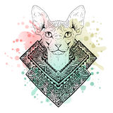 Black and white animal Cat head, watercolor abstract art, tattoo, doodle sketch. Stock Photo