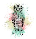 Black and white animal owl, watercolor abstract art, tattoo, doodle sketch. Royalty Free Stock Photography
