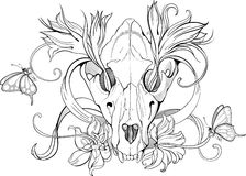Black and white animal skull with flowers Stock Photos