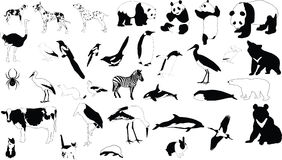 Black-and-white animals. Collection of vector silhouettes of black-and-white animals Royalty Free Stock Photography