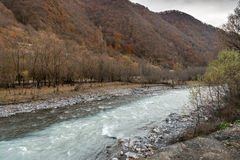 Black and White Aragvi rivers in Georgia Stock Photography