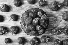 Art black and white photography. Healthy food. Black and white art photography monochrome, background from a ripe strawberry. Summer ripe berries royalty free stock photos