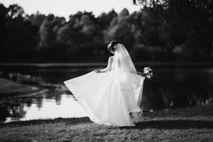 Artistic black and white photography. Wedding photography Stock Photos