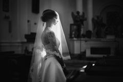 Artistic black and white photography. Wedding photography royalty free stock image