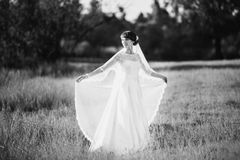 Artistic black and white photography. Wedding photography Royalty Free Stock Photo