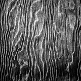 Black and white artistic wood texture Royalty Free Stock Images