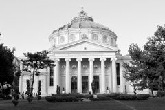 Black&White. Atheneum in downtown Bucharest - Bucuresti. Royalty Free Stock Image