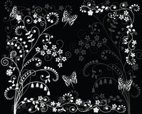 Black_and_white_background. Stock Photo