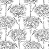 Black and white background with flowers Royalty Free Stock Photo