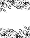 Black and white background with lily flowers. Vector illustration. Royalty Free Stock Images
