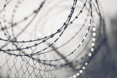 Black and white background with sharp barbed wire stock image