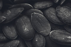 A black and white food background texture image of pumpkin seeds. Stock Image