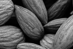 A black and white food background texture image of sunflower seeds. A black and white food background texture image of almond nuts. This image can be used as a Royalty Free Stock Images