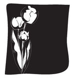 Black and white background with tulips Royalty Free Stock Photography