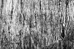 Black and white background from a wood Stock Photos