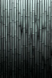 Black And White Bamboo Background. A black and white bamboo background with light gradating to dark at the bottom Stock Photography
