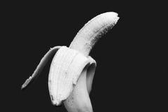 Black and white bannana. Black and white studio shot of banana Stock Image