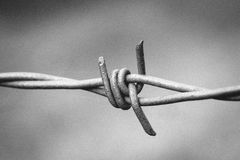 Black and White Barbed Wire Royalty Free Stock Photography