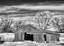 Black and white barn landscape Royalty Free Stock Image