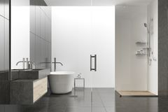 Black and white bathroom. Interior with a tiled floor, a white tub, a shower and a sink. 3d rendering mock up royalty free illustration