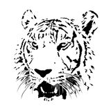 Black and white bengal tiger, isolated animal face vector Stock Photos