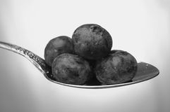 Black and White Berries. A black and white picture of fresh blueberries on a spoon royalty free stock photos