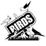 Black and white Birds icon isolated on white Stock Image