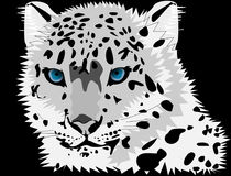 Black And White, Black, Face, Leopard Royalty Free Stock Photography