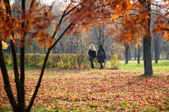 Black and white. Blonde and brunette on walk in yellow park Royalty Free Stock Image