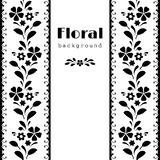 Black and white border background Royalty Free Stock Images
