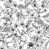 Black and white botanical flowers in the garden hand drawn by pe. Ncil seamless pattern vector for fashion, fabric,wallpaper and all prints on white background royalty free illustration
