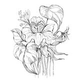 Black and white bouquet. Sketch illustration of black and white bouquet Royalty Free Stock Images