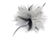 Black and white bow Stock Photo