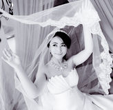 Black and white: bride lifted the veil Stock Image