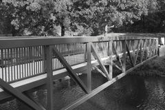 Black and white bridge. Over a creek stock images