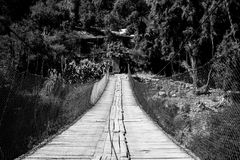 Black and white bridge. A look at a bridge in the forest in black and white royalty free stock photography