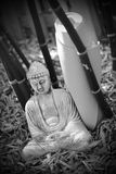 Black and white buddha and yoga Stock Photography