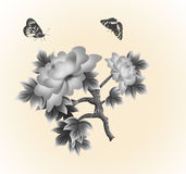 Black and white butterfly and roses. Royalty Free Stock Image