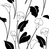 Black and white calla lily pattern. Seamless pattern with black and white calla lily flowers and  leaves Stock Image