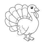 Black and White Cartoon Vector Illustration of Funny Turkey Farm Bird Animal. For Coloring Book royalty free illustration