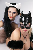Black and white cat. Female lovers in latex black and white cat costumes enjoying erotic act stock image