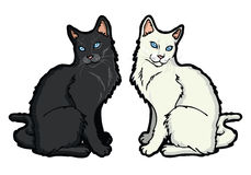 Black and white cat. Vector illustration of two cats Royalty Free Illustration