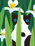 Black and white cat. A black and white cat is looking through the plants Stock Photos