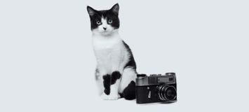 Black and white cat with retro camera studio photo monochrome image Royalty Free Stock Images