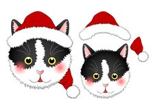 Black White Cat Santa Claus. isolated on White Background. Vector Illustration vector illustration