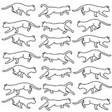 Black and white cats Stock Photos