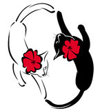 black and white cats with flowers Stock Photo
