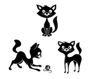Black and white cats Royalty Free Stock Photo